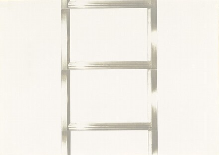 20 Foot Ladder for any Size Wall [V]