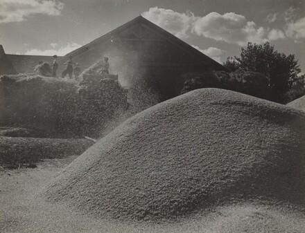 Wheat Threshing, Bourbon
