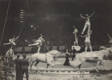Equestrians, Circus, New York