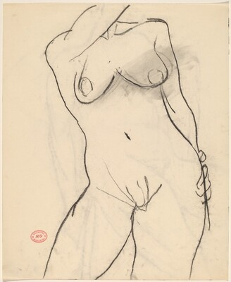 Untitled [nude female torso]