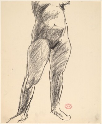 Untitled [torso and legs of a standing female nude]
