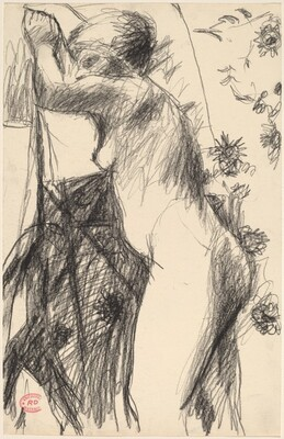 Untitled [female nude in a patterned setting]