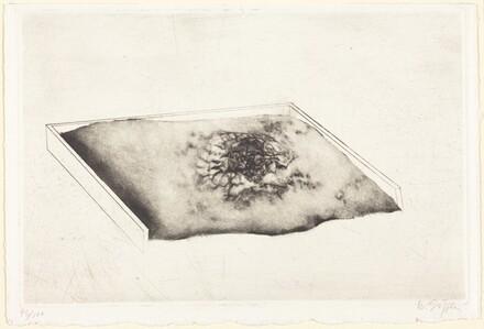 Untitled (Shallow Box)