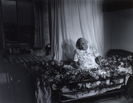 Gussie on a Bed with Flowers