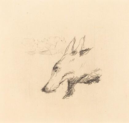 Dingo: Title Page