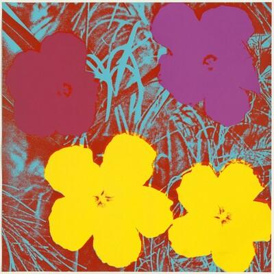 Flowers (yellow, wine, blue, deep red)