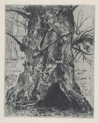 Untitled (Tree Trunk)