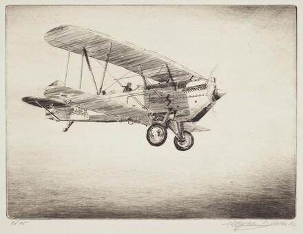 Curtiss Falcon D-12