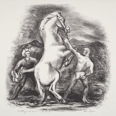 Saddling Wild Horse