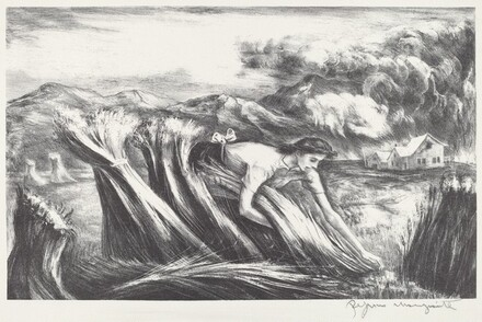 Untitled (Woman Harvesting Wheat)