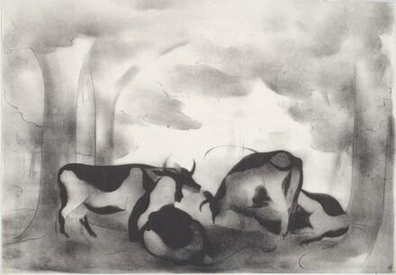 Cows in Shade No. 1
