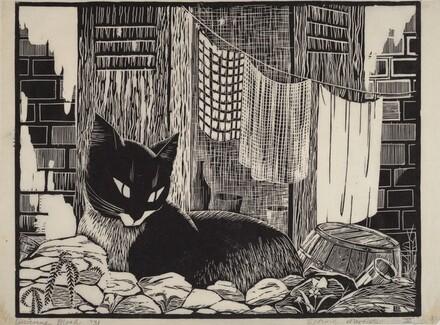 Backyard Cat (large version)