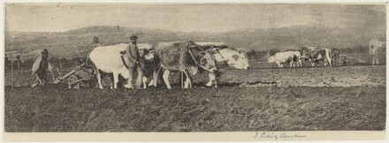 Ploughing on the Campagnetta