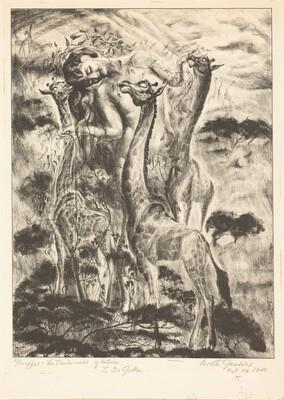 Giraffes: The Tenderness of Nature