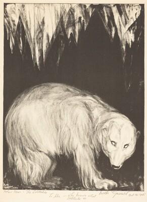 Polar Bear: The Solitudes