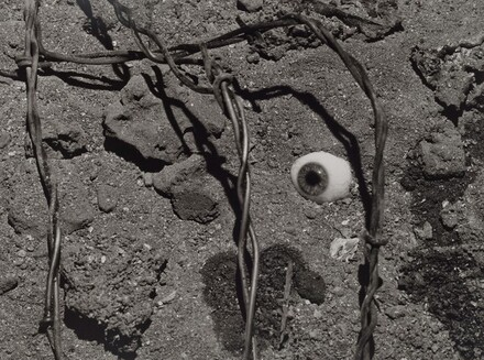 Eye and Barbed Wire