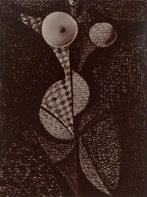 Femme-Fruit (Woman-Fruit), from Transmutations