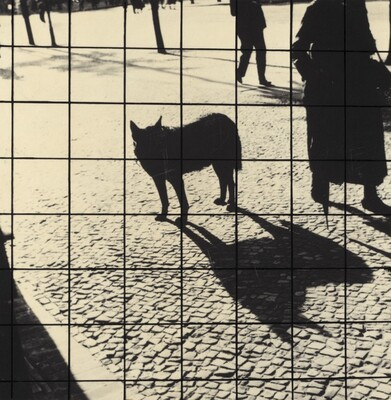 Untitled (Berlin)