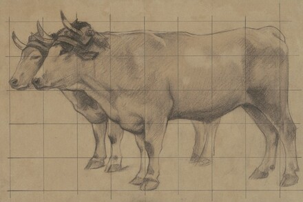 Two Oxen (study for Happy Would be the Men of the Fields, if They Knew Their Good Fortune)