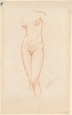 Nude Female Torso