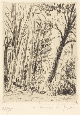 Leaning Tree, Chaville (Chaville, l'arbre penche)