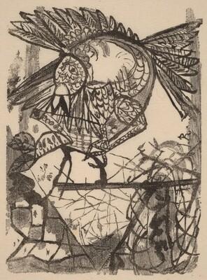 Der Vogel & Sein Nest