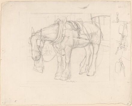 The Trace Horse