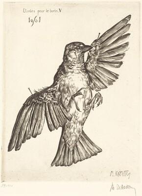 Etudes pour le burin V (Dead Bird)