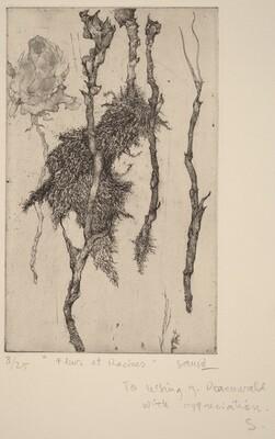 Fleur et Racines (Flower and Roots)