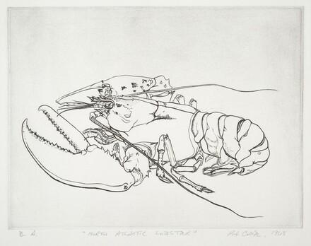 North Atlantic Lobster