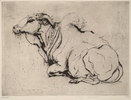 Sacred-bull