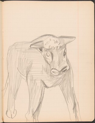stehendes Kalb, weiter ausgeführt (Standing Calf) [p. 11]