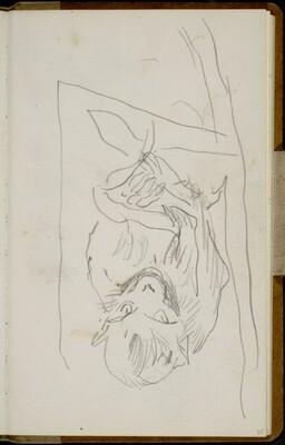 Sitzender Affe (Sitting Monkey) [p. 35]
