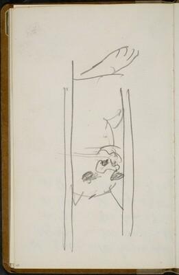 Raubkatze hinter Gitterstäben (Big Cat Behind Bars) [p. 48]