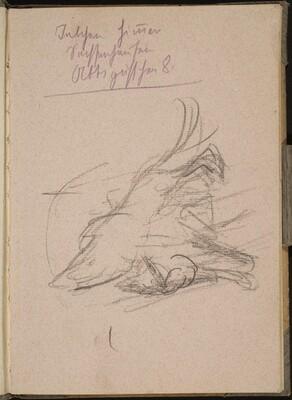 Löwenstudie, Notizen (Lion, Notation) [p. 1]