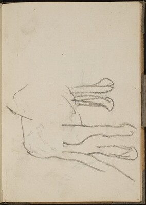 Löwenbeine (Lion Legs) [p. 13]