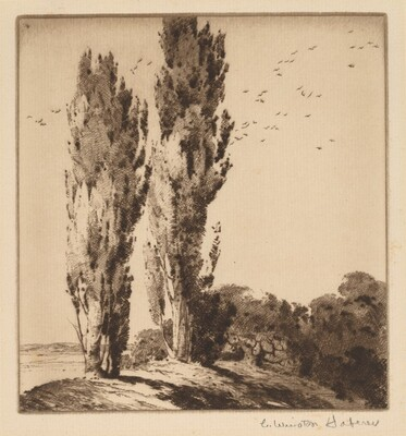 Two Poplars on a Hilltop