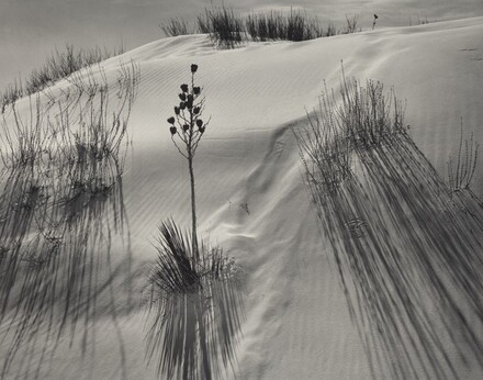 Dune, White Sands National Monument, New Mexico