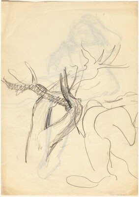 Studies of Tree Trunks and Limbs [verso]