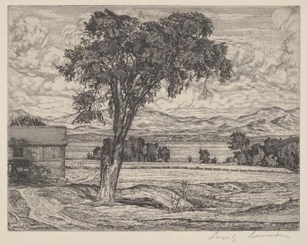 Lake Pastures