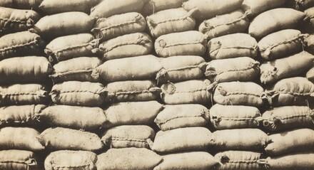 Coffee Bags, Havana