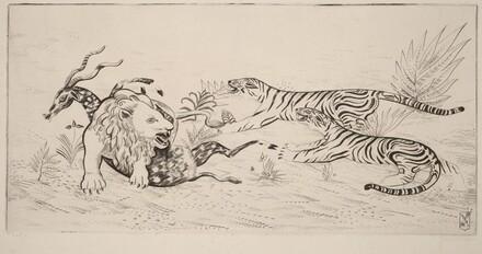 Lion Defending Her Prey (Lion defandant sa proie)