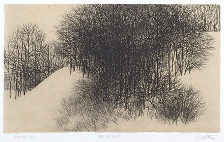 Trees and Snow II