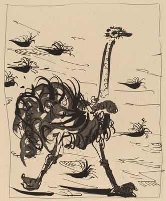 L'Autriche (The Ostrich)