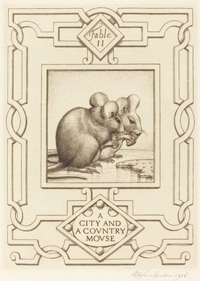 A City and a Country Mouse