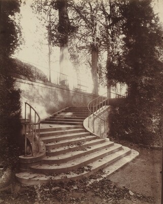 The Steps at Saint-Cloud