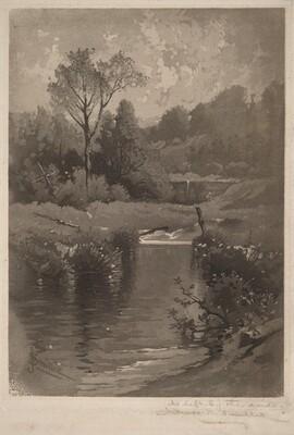 Old Dam Near Montrose
