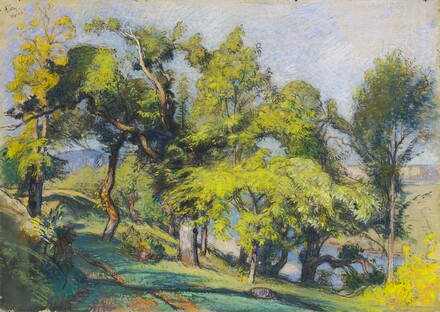 Chestnut Trees above a River