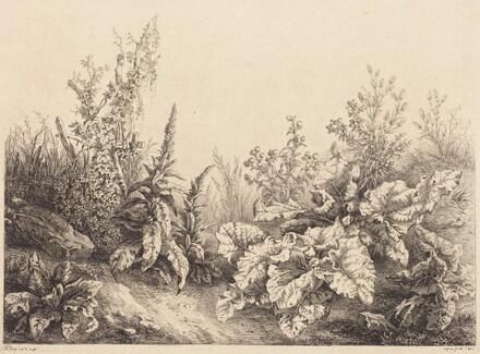 Study of a Burdock
