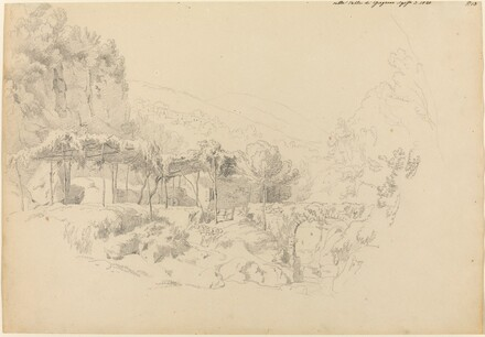 A Shady Arbor in the Valley of Gragnano